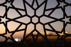 Fäkta med en blom- modell och stjärnor på solnedgången Turkmodeller och bakgrunder royaltyfri fotografi