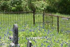 Fäkta och utfärda utegångsförbud för runt om gravstenar i en södra Texas kyrkogård arkivfoton