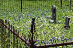 Fäkta runt om gravstenar i en södra Texas kyrkogård arkivfoto
