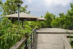 Fäktad och planked plattform med markiser för turist i träd arkivbild