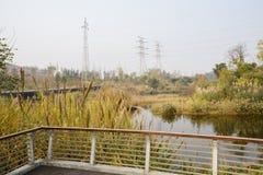 Fäktad och planked plattform på den gälla flodstranden i solig vinter a arkivfoto