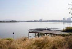 Fäktad plattform på den gräs- lakesiden i solig vintereftermiddag royaltyfri bild