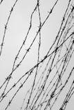 fäktning förse med en hulling stakettråd låtet arrest taggar _ En fånge Förintelsekoncentrationsläger fång Arkivbild