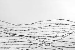 fäktning förse med en hulling stakettråd låtet arrest taggar _ En fånge Förintelsekoncentrationsläger fång Royaltyfria Bilder