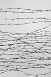 fäktning förse med en hulling stakettråd låtet arrest taggar _ En fånge Förintelsekoncentrationsläger fång Arkivfoto