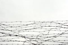 fäktning förse med en hulling stakettråd låtet arrest taggar _ En fånge Förintelsekoncentrationsläger fång Royaltyfria Foton