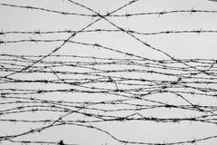 fäktning förse med en hulling stakettråd låtet arrest taggar _ En fånge Förintelsekoncentrationsläger fång Deprimerande backgr Royaltyfri Bild