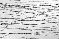 fäktning förse med en hulling stakettråd låtet arrest taggar _ En fånge Förintelsekoncentrationsläger fång Deprimerande backgr Arkivbild