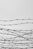 fäktning förse med en hulling stakettråd låtet arrest taggar _ En fånge Förintelsekoncentrationsläger fång Deprimerande backgr Arkivbilder