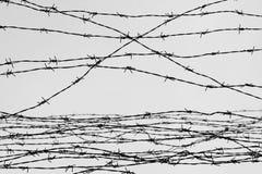fäktning förse med en hulling stakettråd låtet arrest taggar _ En fånge Förintelsekoncentrationsläger fång Deprimerande backgr Royaltyfri Foto