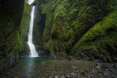 Fäll ned den Oneonta nedgångvattenfallet som lokaliseras i den västra klyftan, Oregon Royaltyfri Foto