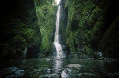 Fäll ned den Oneonta nedgångvattenfallet som lokaliseras i den västra klyftan, Oregon Arkivfoto
