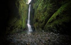 Fäll ned den Oneonta nedgångvattenfallet som lokaliseras i den västra klyftan, Oregon Fotografering för Bildbyråer