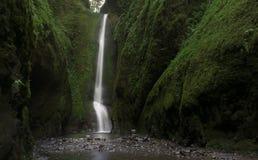 Fäll ned den Oneonta nedgångvattenfallet som lokaliseras i den västra klyftan, Oregon Arkivbild