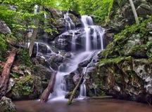 Fäll ned Doyles flodnedgångar i den Shenandoah nationalparken Arkivfoton