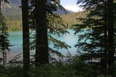 F?ll ned Joffre Lake i Joffre Lakes Provincial Park, Kanada fotografering för bildbyråer