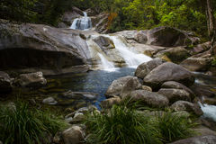 Fäll ned Josephine Falls royaltyfria foton