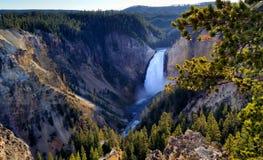 Fäll ned nedgångar, den Yellowstone nationalparken Royaltyfri Foto