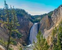 Fäll ned nedgångar i den Yellowstone nationalparken arkivfoto