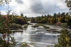 Fäll ned nedgångar, Tahquamenon nedgångar delstatsparken, Chippewa County, Michigan, USA Royaltyfria Bilder