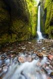 Fäll ned Oneonta nedgångar i sommar, den Columbia River klyftan, Oregon Royaltyfri Foto
