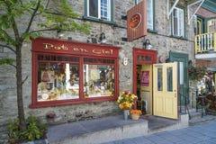 Fäll ned Quebec City Kanada Royaltyfria Foton