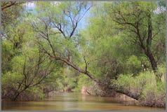 fäll ned räckviddfloden volga Arkivbild
