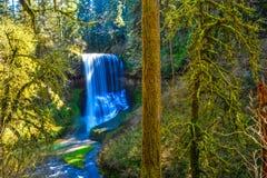 Fäll ned södra nedgångar i en spektakulär delstatspark i Oregon Royaltyfri Foto