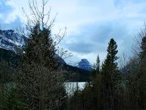 Fäll ned två medicin sjön till och med träden Arkivbild
