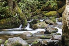 Fäll ned Wallace Falls Arkivbilder
