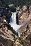 Fäll ned Yellowstone nedgångar i den Yellowstone nationalparken Fotografering för Bildbyråer