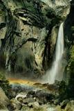 Fäll ned Yosemite Falls Royaltyfria Bilder