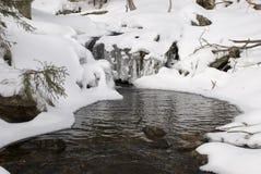 Fälle in den Schnee Stockfotos