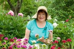 Fällige Frau in der Gartennelkeanlage Stockbild