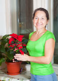 Fällige Frau mit Poinsettiablumen lizenzfreie stockbilder