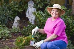 Fällige Frauengartenarbeit. Stockfotos