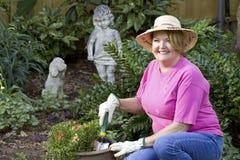 Fällige Frauengartenarbeit. Stockfoto