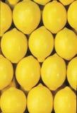 Fällige Gruppe Zitronen Stockfotos