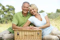Fällige Paare, die Picknick in der Landschaft haben Stockfoto