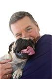 Fälliger Mann-Holdingpug-Hund, getrennt Lizenzfreies Stockfoto