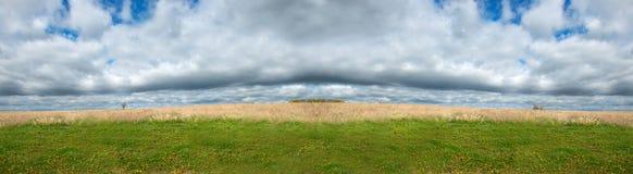 Fältängen, himmel fördunklar det panorama- banret för panorama Arkivbilder