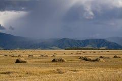fält över stormåska Arkivfoto