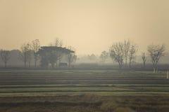 fält arkivfoto