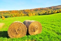 Fält av baler av hö i höstfält Royaltyfri Bild