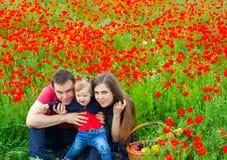Fält av blommor Arkivfoton