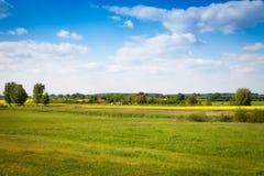 Fält av canola i sommar Fotografering för Bildbyråer