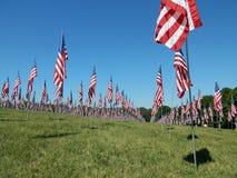 Fält av flaggor Arkivbilder