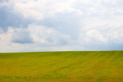 Fält av gräs och den molniga skyen Arkivfoto