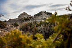 Fält av grässlättar med sceniska kanjoner lite varstans Arkivbild
