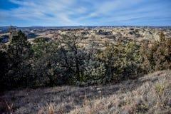 Fält av grässlättar med sceniska kanjoner lite varstans Royaltyfri Bild